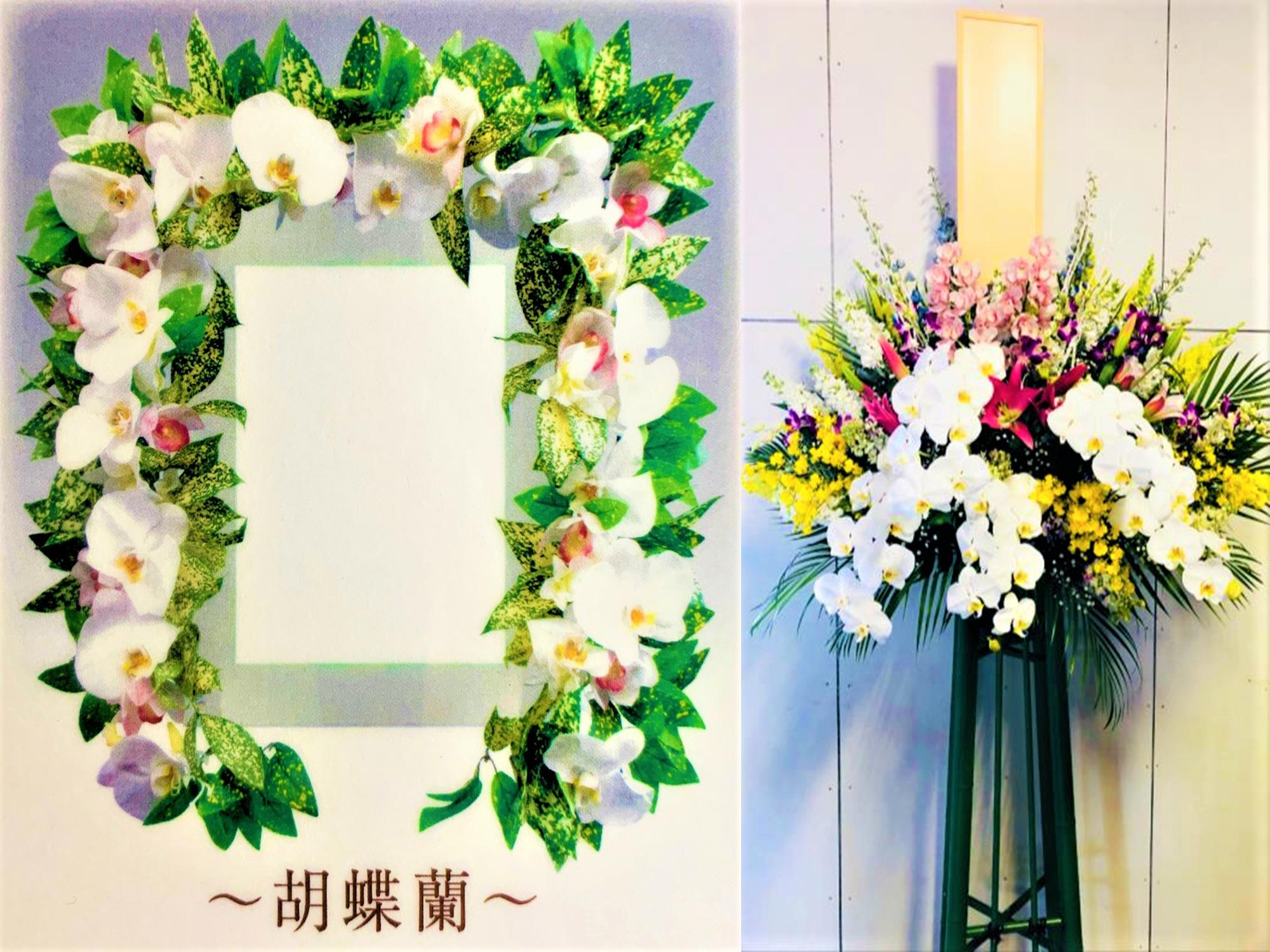 花額-胡蝶蘭、供花
